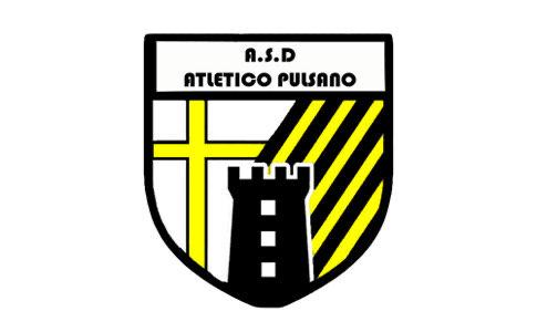 Pulsano Logo